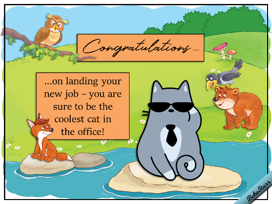 coolest cat in the office  free new job ecards  greeting