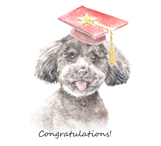 Congratulations By A Pup!