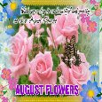 A Pretty August Flowers Card For You.