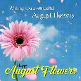 A Nice August Flowers Card For You.
