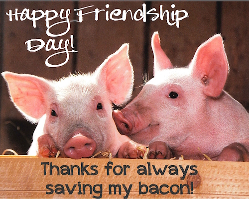 Thanks For Always Saving My Bacon!