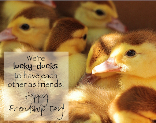 We're Lucky Ducks To Be Friends.