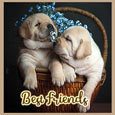 Always Be Best Friends!
