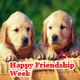 With Your Friendship...