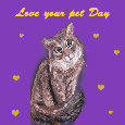 Love Your Pet Cat Day.