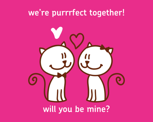 Purrfect Together?