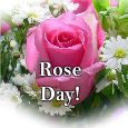 Thinking About You On Rose Day!