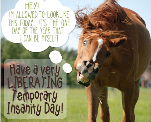 Be Yourself On Temporary Insanity Day!