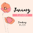 Flowers For January.