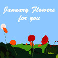 January Flowers For You New...