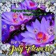 My Happy July Flowers Card For You.