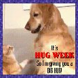 My Cute Hug Week Card.