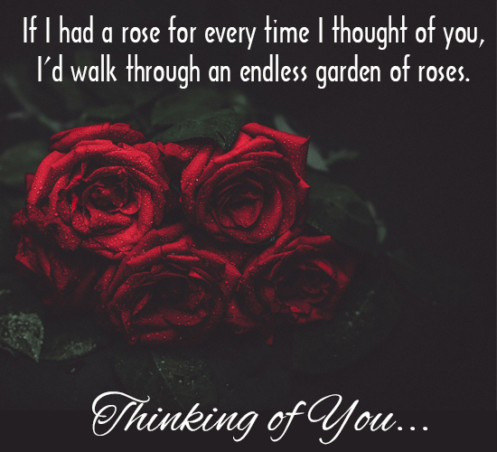 A Rose For My Thought.