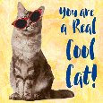 You Are A Real Cool Cat.