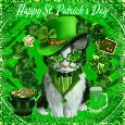 Cute St. Patrick's Day Cat.