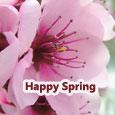 Send Spring Ecard!