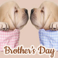 Warm Wishes For Brother's Day!
