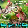 A Purrr-fect Hug Your Cat Card For You.