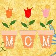 For The Special Mom To Be!