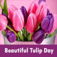 Beautiful Tulips For A Beautiful One.