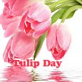 Lots Of Love On Tulip Day!