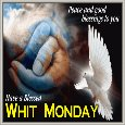 A Blessed Whit Monday To You.