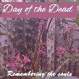 Day Of The Dead, Flowers...