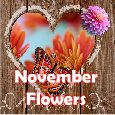 Enjoy The Charm Of November!