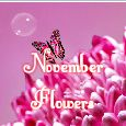 Sending Love With November Flowers!