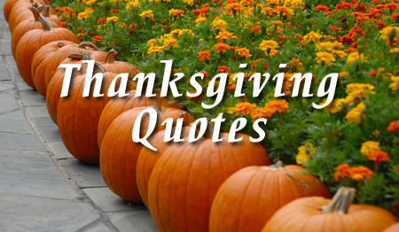 happy thanksgiving quotes - Free Thanksgiving Cards