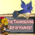 The Joy Of Harvest!