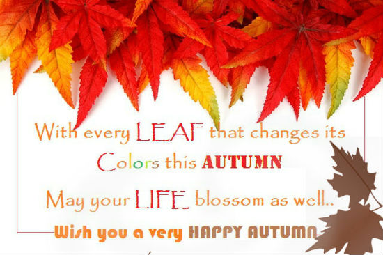 Happy Colors Of Autumn...