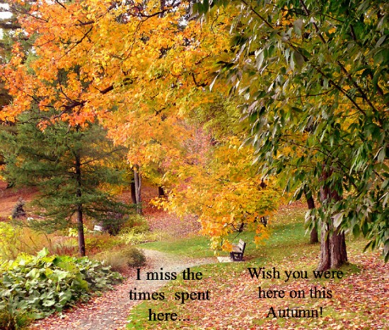 Miss You On This Autumn Evening...