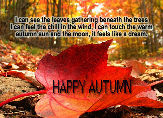 Wish Happy Autumn.