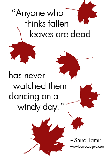 Fallen Leaves Autumn Quote.