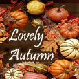 Lovely Autumn Time!
