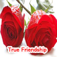 True Friendship Is Like A Rose.