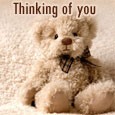 Thinking Of You On Teddy Bear Day!