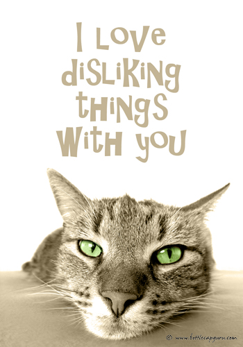 I Love Disliking Things With You!