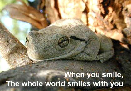 Smile, The Whole World Smiles With U.