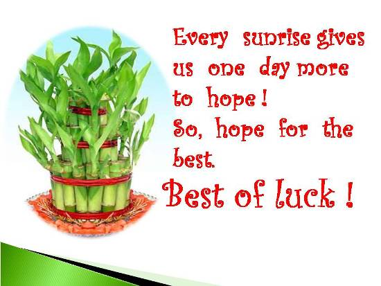 wish best of luck to your loved ones in every path of their lifes journey