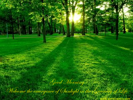 Gud Morning With Sun Rays In Greenery.
