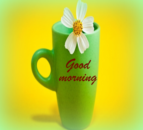 Healthy Good Morning Quotes: For A Fresh And Healthy Morning! Free Good Morning ECards