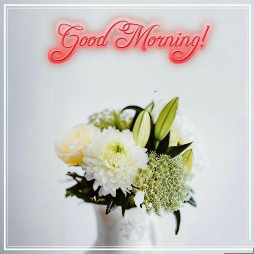 Simple Good Morning Wish. Free Good Morning eCards