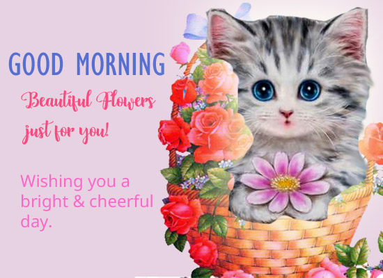 Good Morning Wish From Cute Kitty!