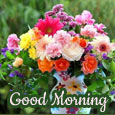 Pleasant Morning Wishes!