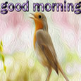 Good Morning With Cute Bird.