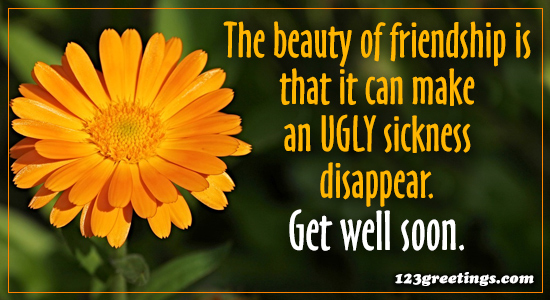 The Beauty Of Friendship...