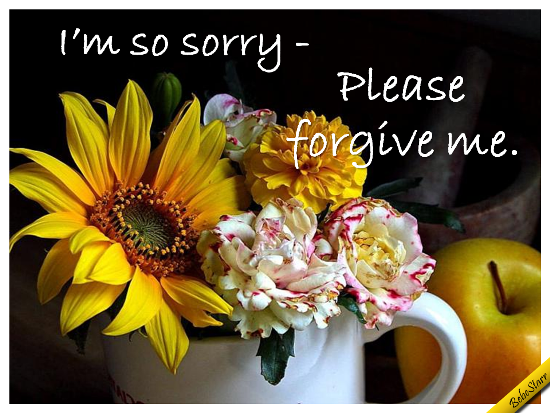 A Sincere Apology.