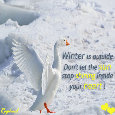 Winter Is Outside Not In Your Heart!
